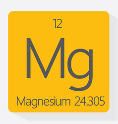magnesium vector image vector image