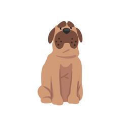 cute bulldog dog funny pet character furry human vector image