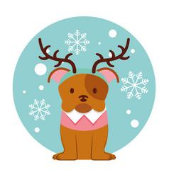 dog merry christmas card vector image