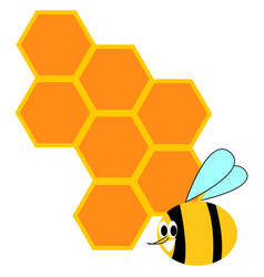 honeycomb and bee on white background vector image