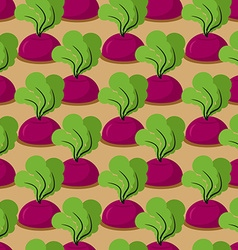 Beet seamless pattern Plantation beets with haulm vector image vector image
