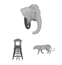 african safari monochrome icons in set collection vector image
