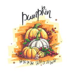 Autumn with pumpkin rowan vector