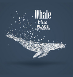 Blue whale particle divergent composition vector