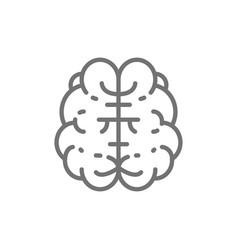 brain mind intelligence human organ line icon vector image