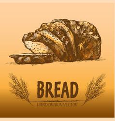 digital color detailed line art bread vector image