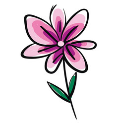 drawing of pink flower color on white background vector image