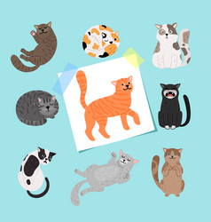shorthaired cats cartoon cat vector image