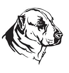 decorative portrait of central asian shepherd dog vector image