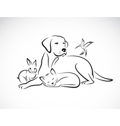 Group pets vector