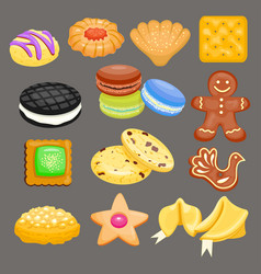 Sweet cookie cakes tasty snack delicious vector