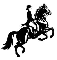 dressage rider black white vector image vector image