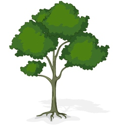 tree cartoon for you design vector image vector image
