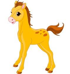 cute horse foal vector image