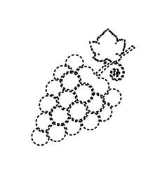 grapes sign black dashed vector image