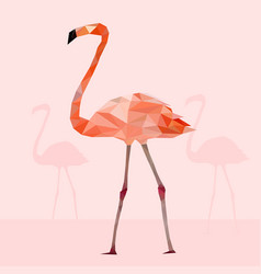 low poly colorful flamingo bird on pink vector image