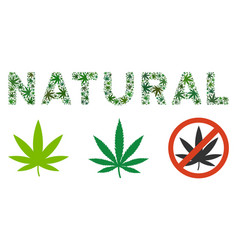 Natural caption mosaic of hemp leaves vector