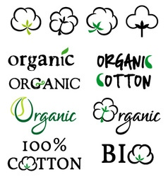 Organic cotton design elements vector