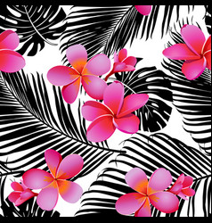 strelitzia palm pattern vector image