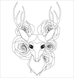 Graceful deer coloring page for adult vector image vector image