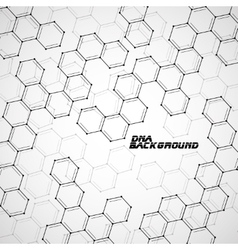 Molecule DNA Abstract background vector image