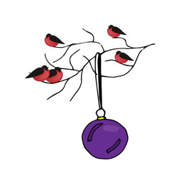 bullfinches sitting on a branch christmas ball vector image