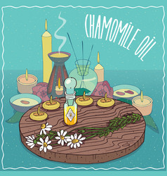 Chamomile oil used for aromatherapy vector