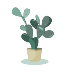 Prickly pear cactus a potted plant isolated vector