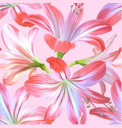 Realistic pink flowers - hippeastrum or amaryllis vector