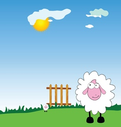 sheeps on the farm cartoon vector image