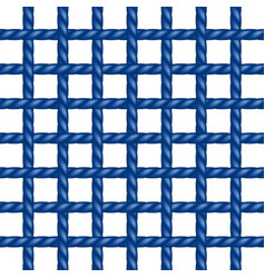 net of rope in blue design vector image