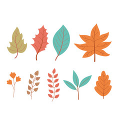 autumn leaves maple branch foliage nature icon set vector image