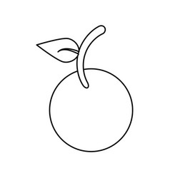 Fruit vegan nutrition icon thin line vector