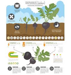 Gardening infographic new 30 vector
