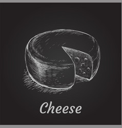 head of cheese hand drawn vector image