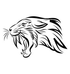 Isolated head of saber tooth tiger vector image