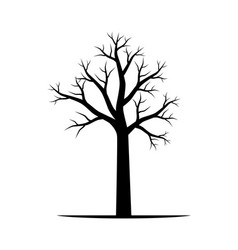 naked tree vector image