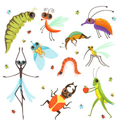 set funny cartoon insects isolate on white vector image
