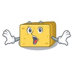 Surprised gouda cheese pieces cartoon vector
