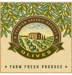 Vintage colorful olive harvest label vector image