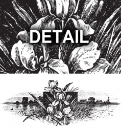 antique landscape engraving vector image vector image