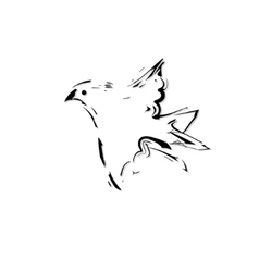 silhouette of the bird vector image vector image