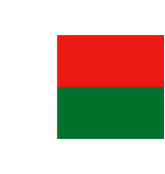 flag of madagascar vector image vector image
