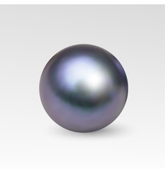 Pearl realistic isolated on white background vector image vector image