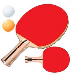 vector table tennis equipment vector image vector image