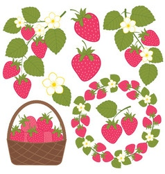 Strawberry Set vector image