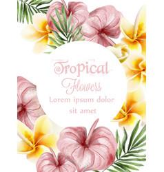Anthurium and plumeria tropic flowers vector