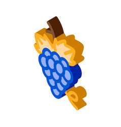bunch grapes isometric icon vector image