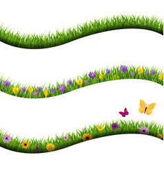 grass with flowers and butterfly collection vector image