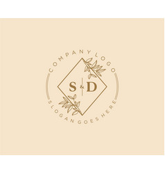 Initial sd letters beautiful floral feminine vector